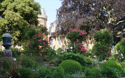 Belvoir Flower & Garden Show Line Up Revealed