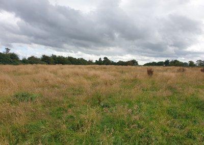 Belvoir Estate, 9.08 acres of Grassland at Hall Lane, Eastwell
